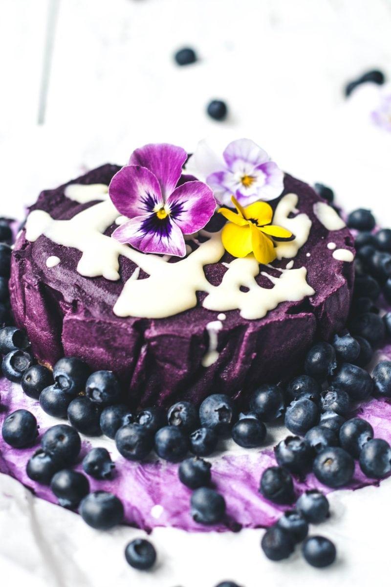 Eh Vegan Botanica Raw Blueberry Cashew Cake