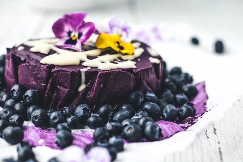 Eh Vegan Botanica Raw Blueberry Cashew Cake