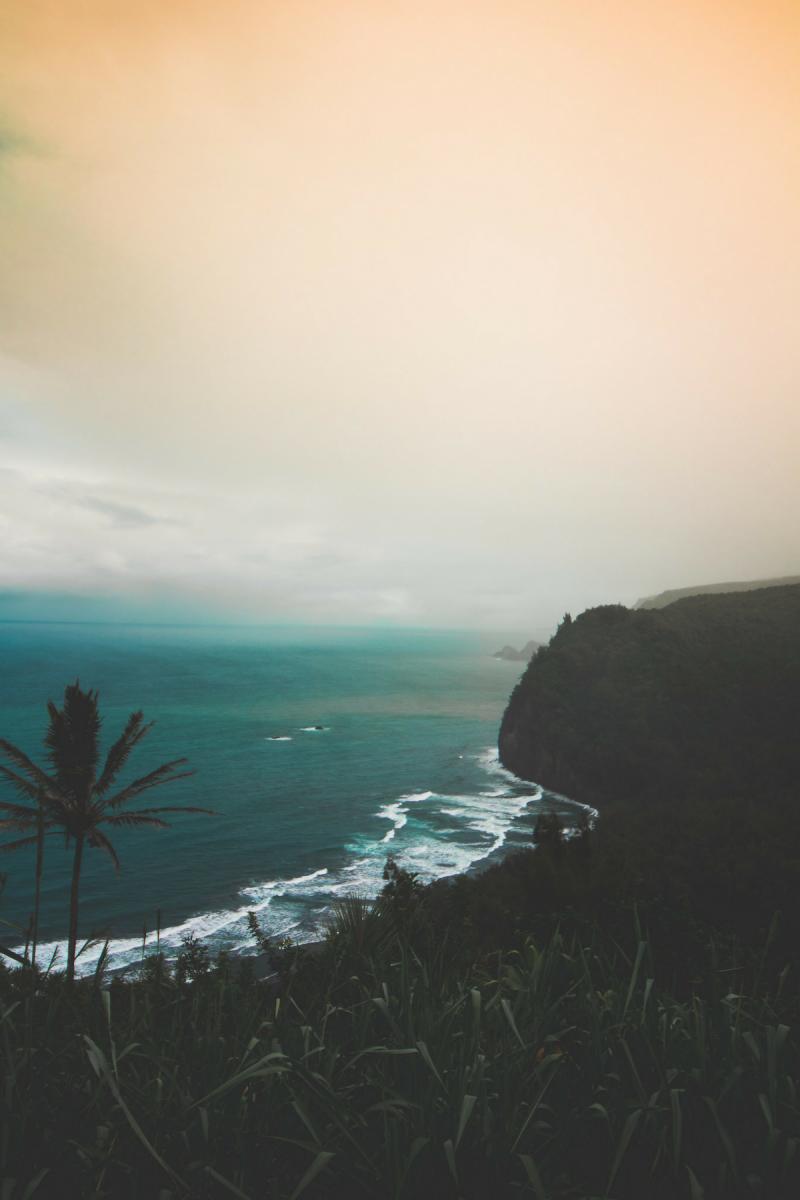 eh vegan big island hawaii trip pololu valley