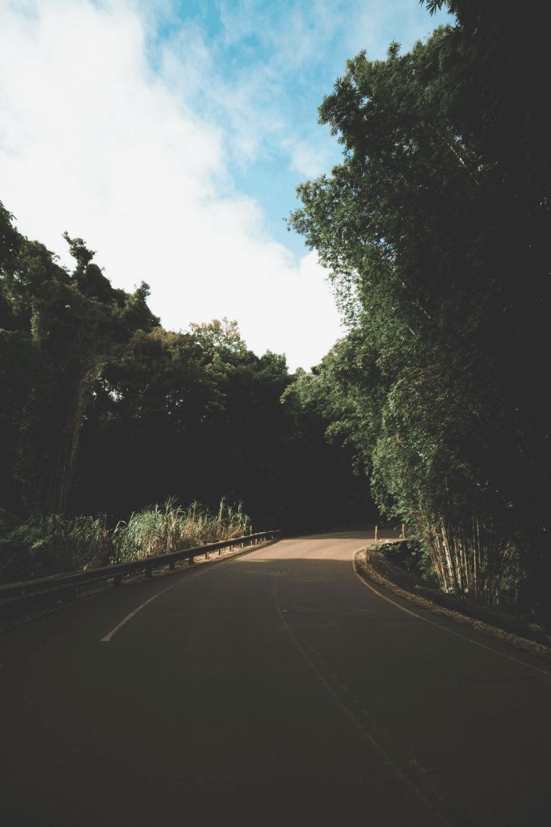 eh vegan big island hawaii trip kona roadtrip