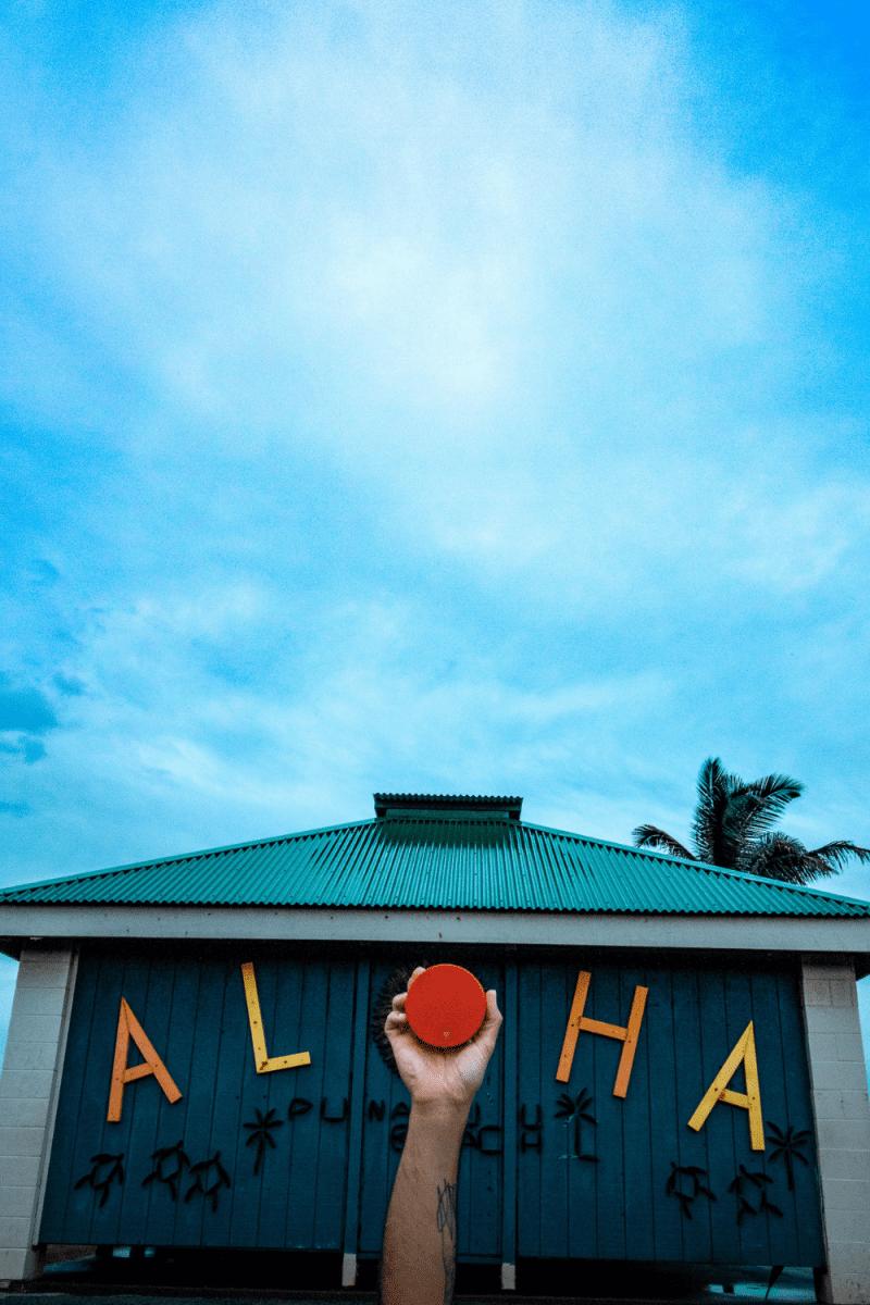 eh vegan big island hawaii
